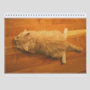 Maine Coon Kittens Wall Calendar