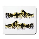 Piebald madtom catfish Mousepad