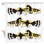 Piebald madtom catfish Shower Curtain