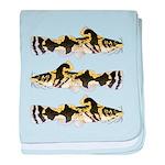 Piebald madtom catfish baby blanket