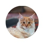 """Maine Coon 3.5"""" Button"""