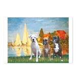 Regatta / 3 Boxers Postcards (Package of 8)