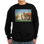 Regatta / 3 Boxers Sweatshirt (dark)