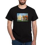 Regatta / 3 Boxers Dark T-Shirt