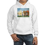 Regatta / 3 Boxers Hooded Sweatshirt