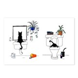 Funny cats Postcards
