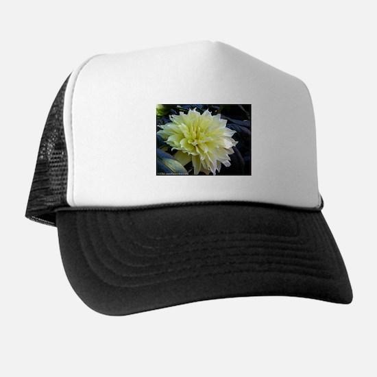 the Yellow Dahlia Trucker Hat