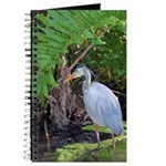 Hunting heron Journal