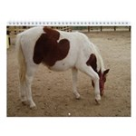 """""""The Horses Of Illinois"""" Wall Calender"""