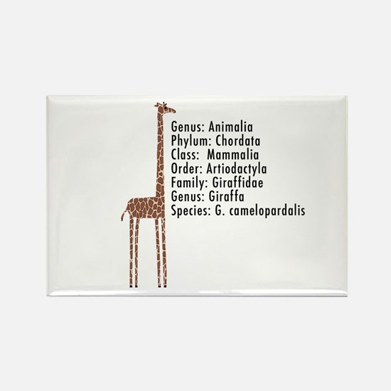 giraffe - with text Rectangle Magnet