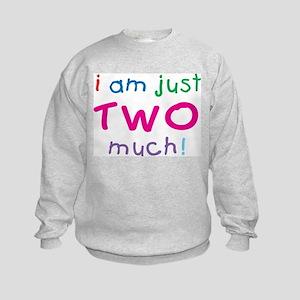 I'm Two Much 2nd Birthday Kids Sweatshirt