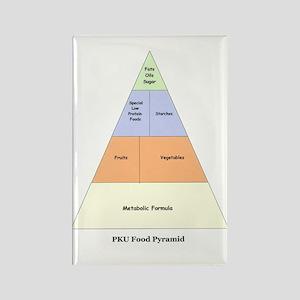 PKU Food Pyramid Rectangle Magnet