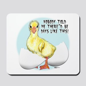Gosling Hatch #2 Mousepad