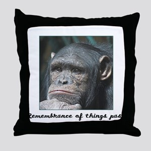 Remembrance of Things Past Throw Pillow