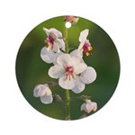 Moth Mullein Ornament (Round)