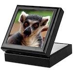 Lemur Keepsake Box