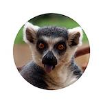 Lemur 3.5