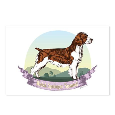 Welsh Springer Spaniel: Banne Postcards (Package o