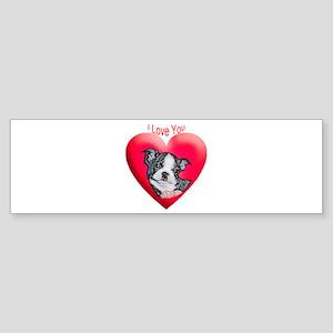 Valentines Boston Terrier Bumper Sticker