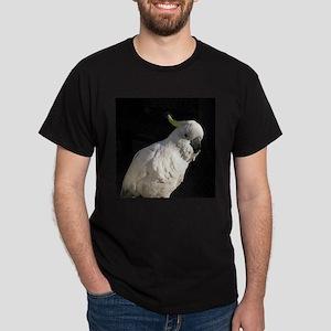 Sulphur series 1 Black T-Shirt
