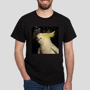 sulphur series 2 Black T-Shirt