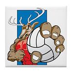 Bucks County Volleyball Tile Coaster