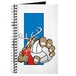 Bucks County Volleyball Journal