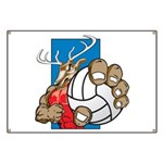 Bucks County Volleyball Banner
