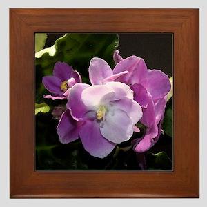 Violet Delight Framed Tile
