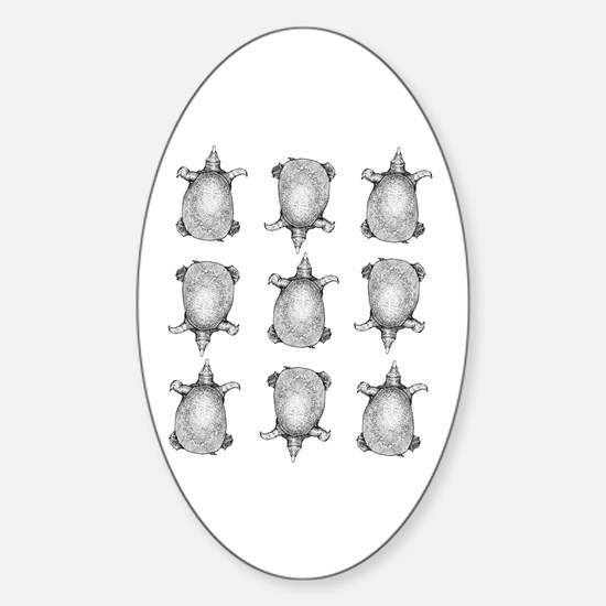 Softshell Oval Decal
