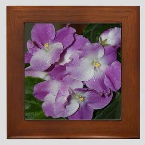 Shades of Violet Framed Tile