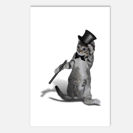Unique Funny kitten Postcards (Package of 8)