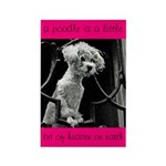 Poodle Heaven Rectangle Magnet