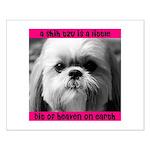 Shih Tzu Heaven Small Poster