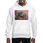 Camel Hooded Sweatshirt