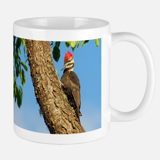 Female Pileated Woodpecker Mug