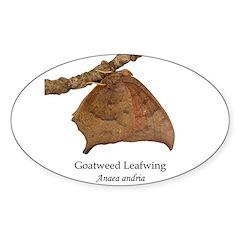 Leafwing Sticker (Oval 10 pk)