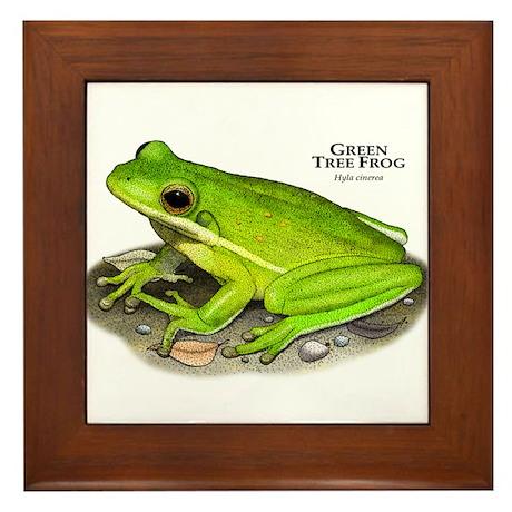 Green Treefrog Framed Tile