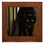 Black Cat Framed Tile