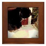 Tuxedo Kitty with Sink Framed Tile
