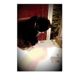 Tuxedo Kitty with Sink Postcards (Package of 8)