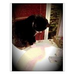 Tuxedo Kitty with Sink Small Poster