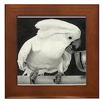 Cockatoo Framed Tile