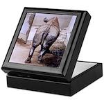 Rhino's Butt Art Keepsake Box
