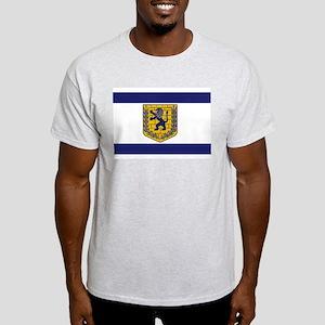 Jerusalem Municipal Flag Light T-Shirt