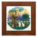 St Francis (Wff) - Two Shelties Framed Tile