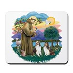 St Francis (Wff) - Two Shelties Mousepad
