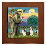 St Francis (W) - 2 Shelties (D&L) Framed Tile