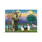 St Francis (W) - 2 Shelties (D&L) Mini Poster Prin