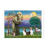St Francis (W) - 2 Shelties (D&L) Postcards (Packa